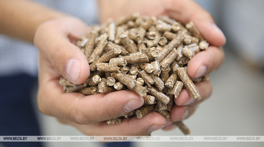 Новые пеллетные заводы в октябре отгрузили топливные гранулы более чем на 1,1 миллиона евро