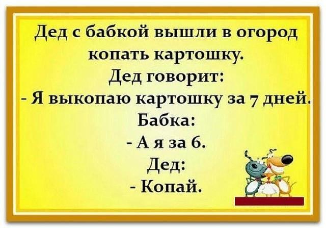 https://mtdata.ru/u22/photo7CC2/20998850670-0/original.jpeg#20998850670