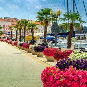 курорт Пореч в Хорватии