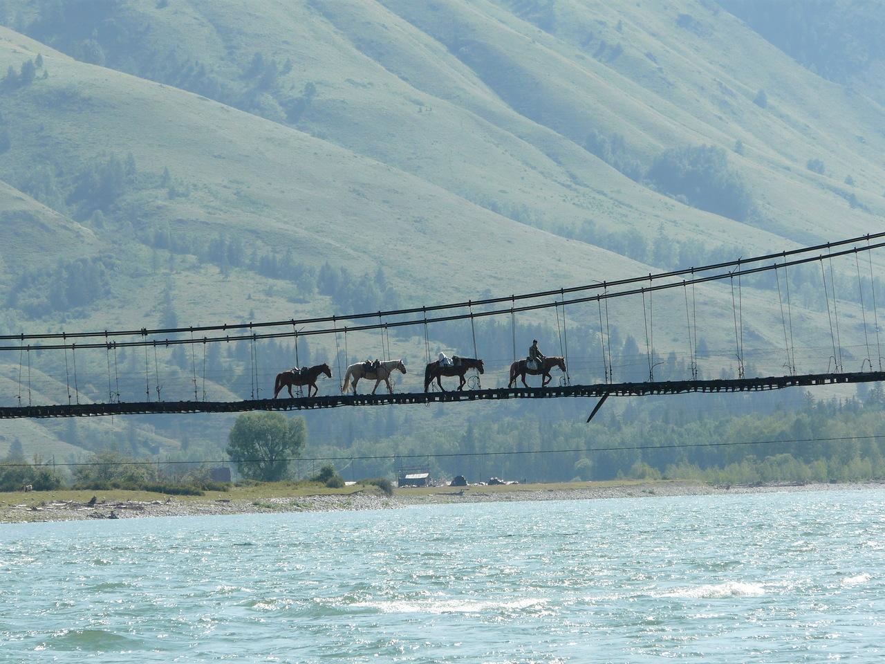 Подвесной мост на реке Катунь. пос. Тюнгур.