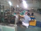 Мозамбик: Профсоюз шокирован ужасными условиями труда на фабрике