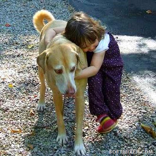 kid-hugging-dog