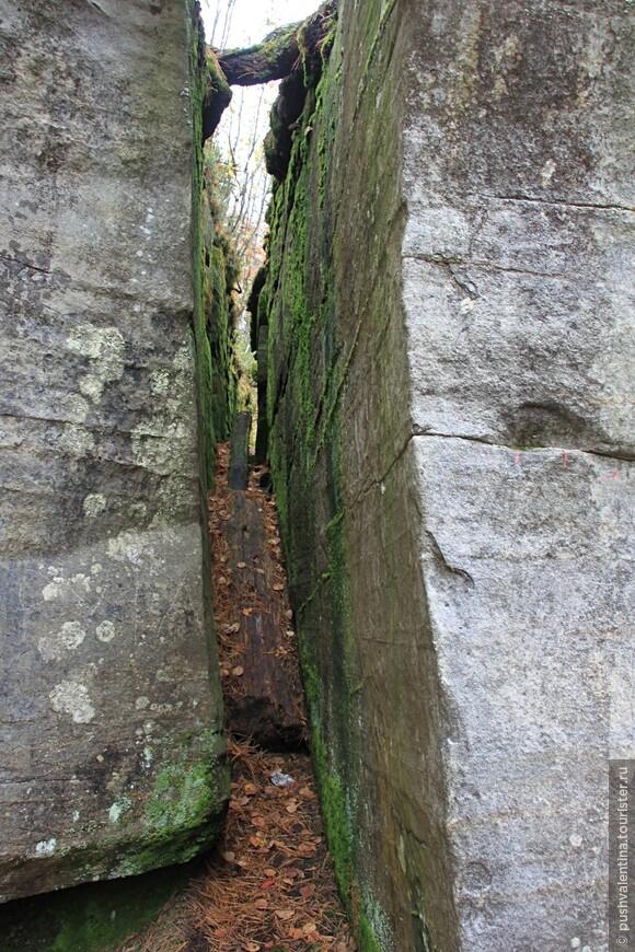 Усьвинские столбы+Каменный город золотой порой