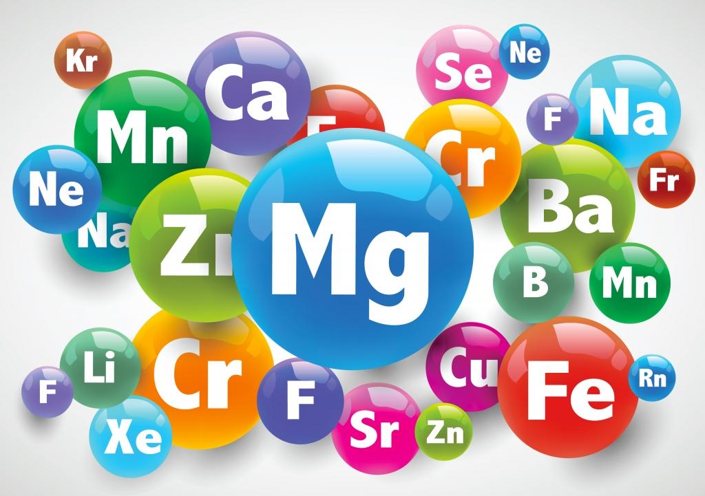 sostav-dyni-obogaschen-vazhnymi-vitaminami-i-mikro