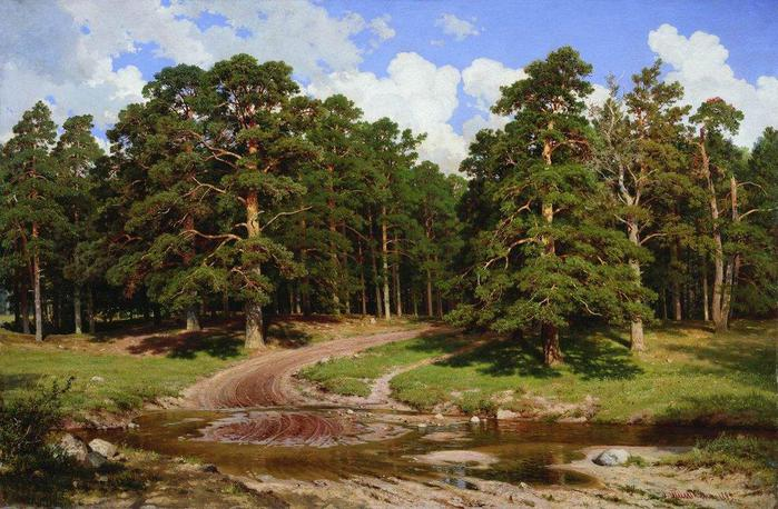 4432201_pineforest1895 (700x458, 77Kb