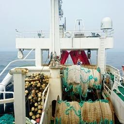 Предприятиям предстоит определиться с видом рыболовства на 2021 год