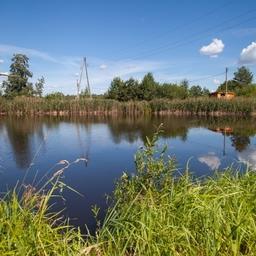 Законопроект об использовании прудов на водотоках снимет серьезную угрозу для хозяйств, выращивающих рыбу в таких водоемах, считают в Ассоциации «Росрыбхоз»