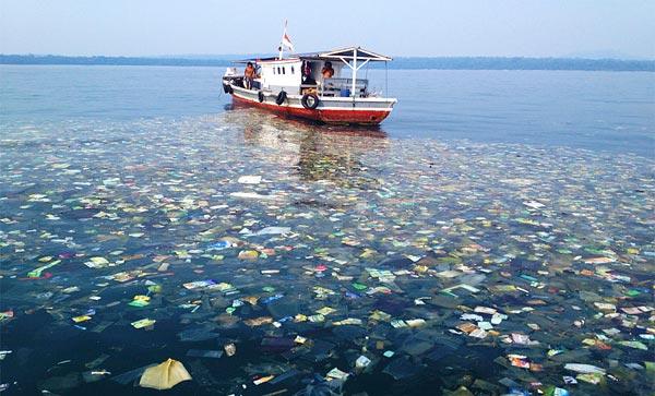 Воды Индонезии