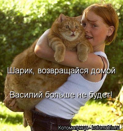 kotomatritsa_q (400x427,  115Kb)