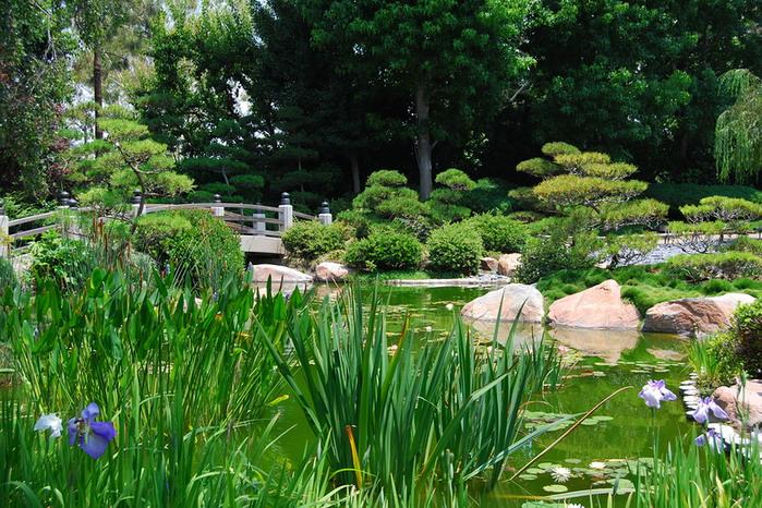 Японский сад в Калифорнии