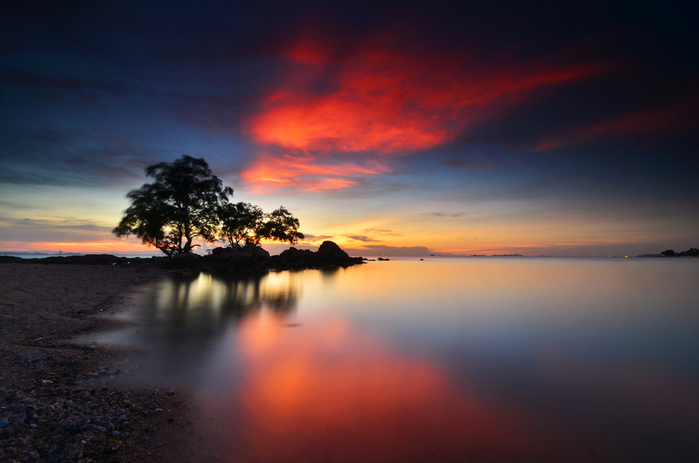 tree_at_sunset_by_comsic-d68gig5 (700x463, 253Kb)