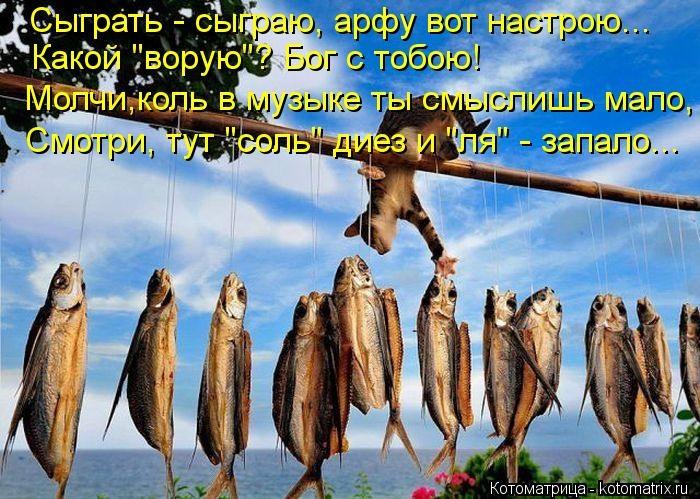 kotomatritsa_SS (700x499,  292Kb)