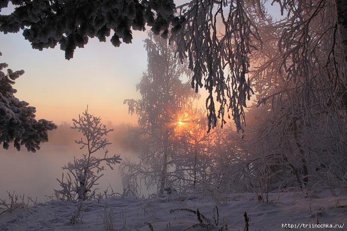 Посвящаю всем сибирячкам! Сибирячка-королева леса!