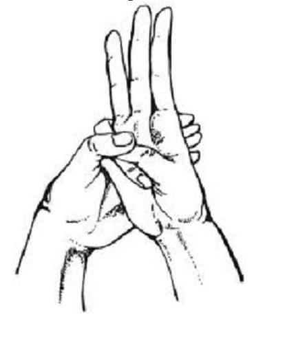 9. При воспалении желудка, кишечника, болезнях печени, вздутии и коликах Способность пальцев, медицина