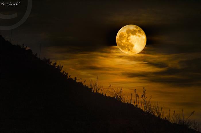 caught_me_a_super_moon_by_explicitstudios-d6ajdlz (700x464, 220Kb)